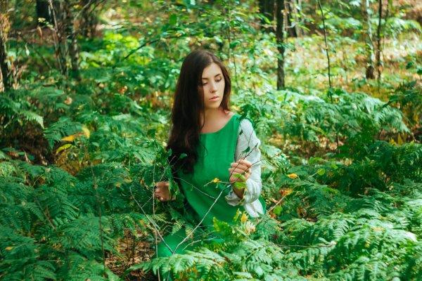 Травы для коррекции гормонального фона у женщин можно заготавливать самостоятельно