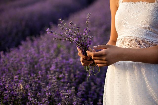 lavender 3576132 640 - Самые лучшие БАДы для женщин в разные периоды гормональных перестроек