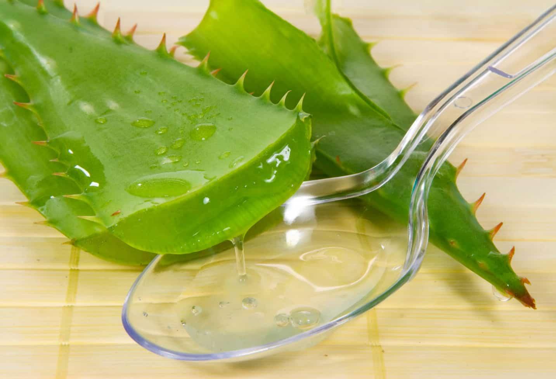 сок алоэ поможет избавиться от хронического цервицита шейки матки
