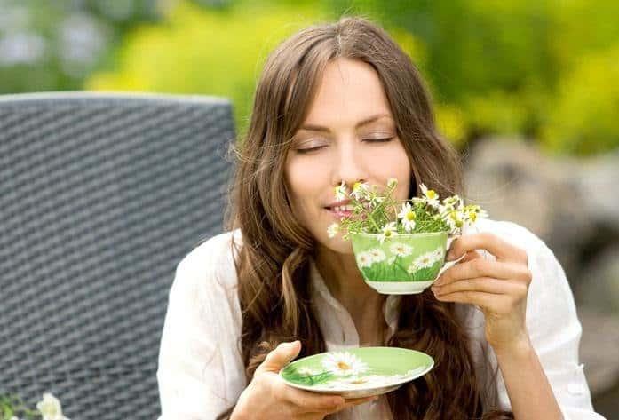 травяные отвары помогут нормализовать уровень прогестерона