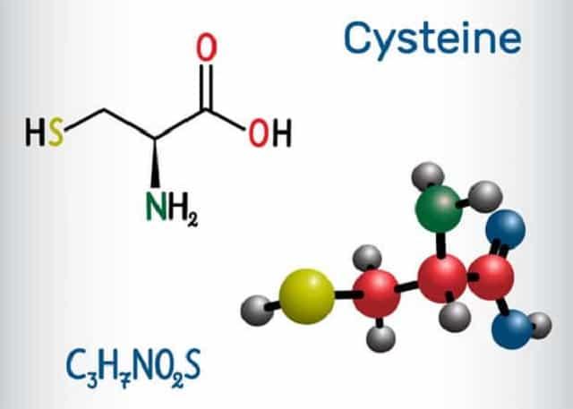Цистеин аминокислота