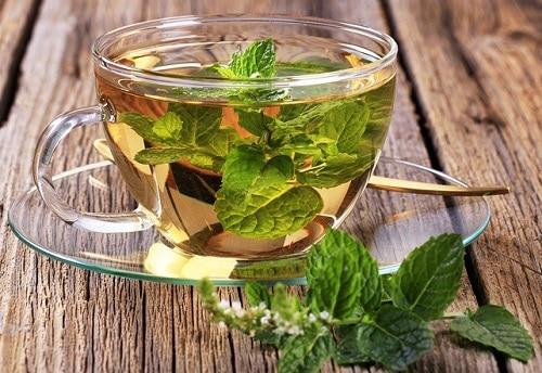 мятный чай полезные свойства и противопоказания