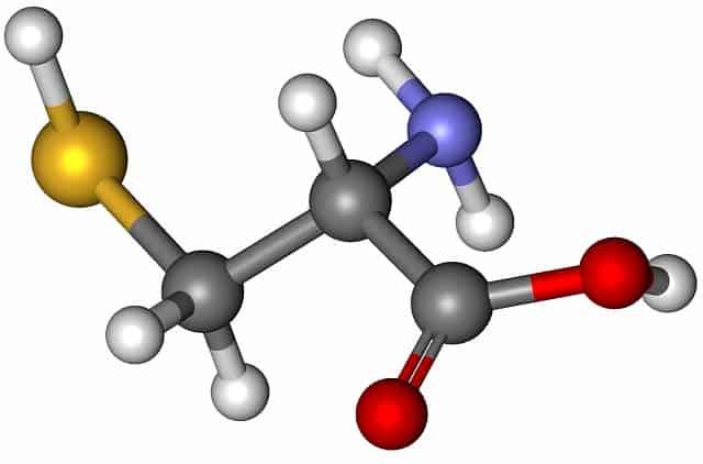 Гетероциклические аминокислоты