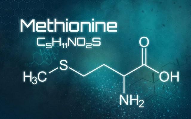 Метионин для печени