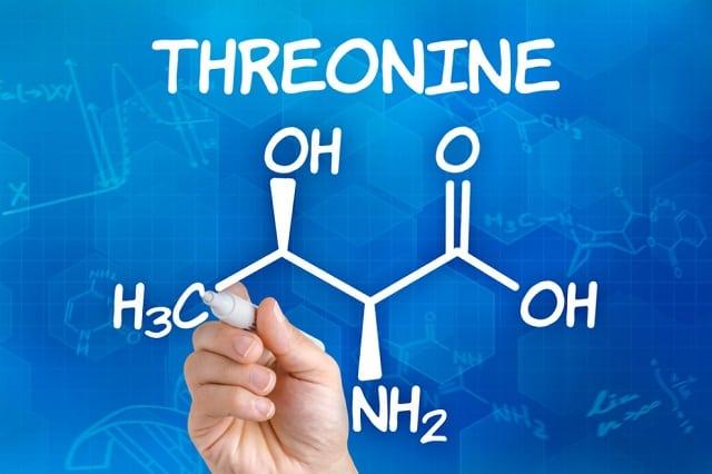 Треонин аминокислота