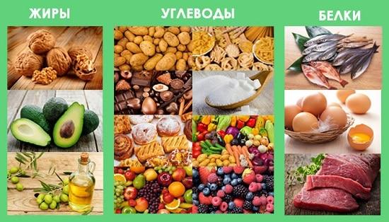 полноценное питание: белки, жиры и углеводы