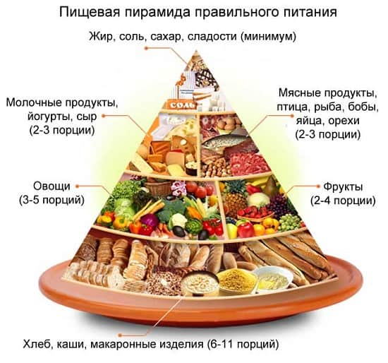 рекомендации ВОЗ по питанию: пирамида здорового питания