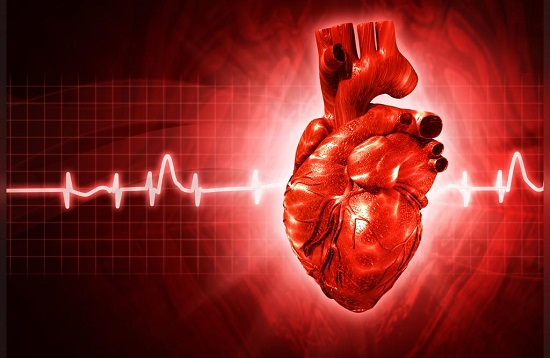 Гормоны, влияющие на работу сердца
