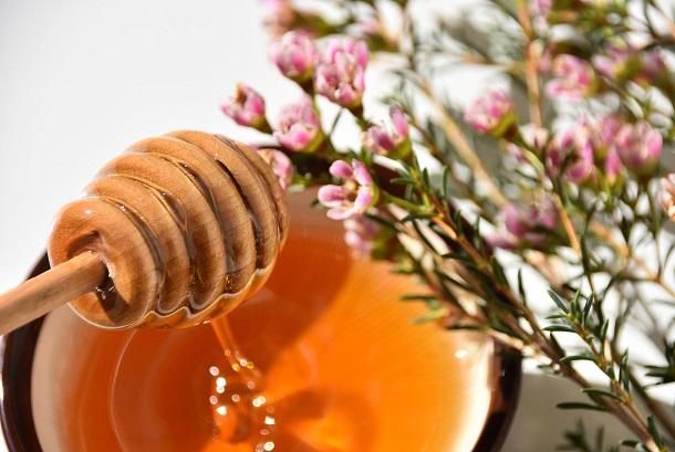 мед манука обладает множеством целебных свойств
