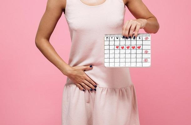 фазы менструального цикла и гормоны