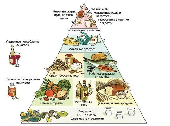 пищевая пирамида здорового питания