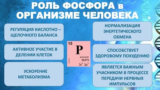 в каких продуктах содержится фосфор: роль минерала для организма человека