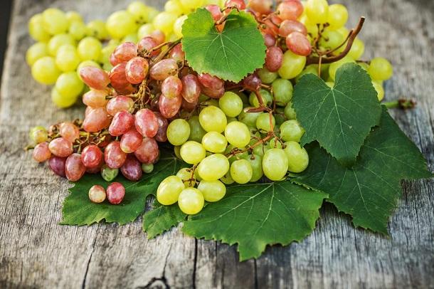 vinograd-kishmish-polza