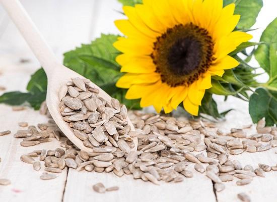семена подсолнечника - источник ценных жиров
